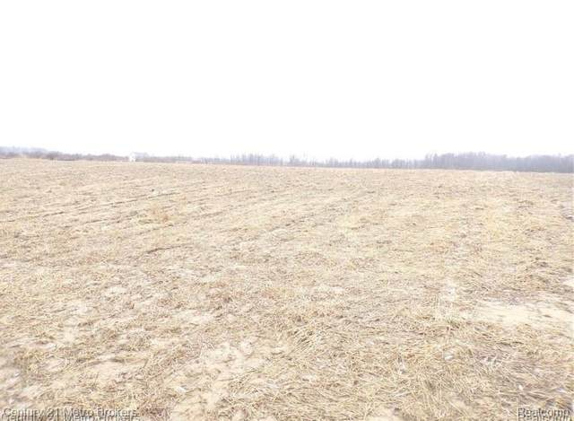 Parcel J Lyons Road, Goodland Twp, MI 48444 (MLS #2200079166) :: The John Wentworth Group