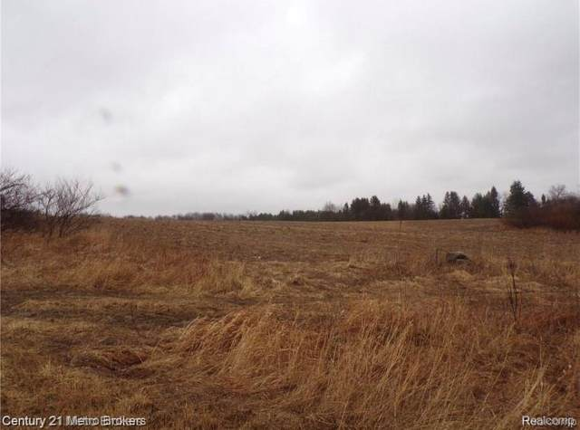 Parcel I Lyons Road, Goodland Twp, MI 48444 (MLS #2200079168) :: The John Wentworth Group