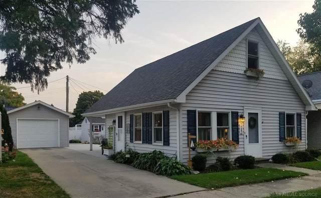 7242 Hubbard, Lexington, MI 48450 (#58050024660) :: Novak & Associates
