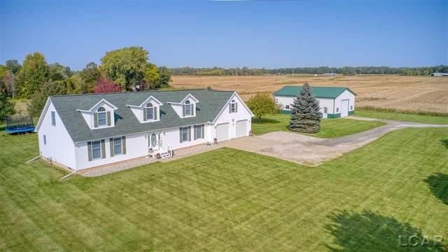4343 Townley, Rollin Twp, MI 49253 (#56050024802) :: Duneske Real Estate Advisors