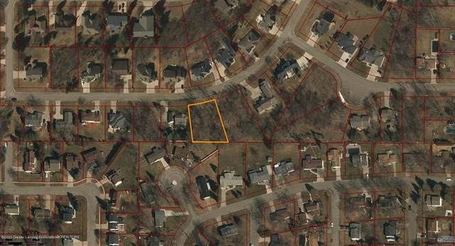 Lot 19 Canyon Trail, Delta Twp, MI 48917 (MLS #630000250189) :: The Toth Team