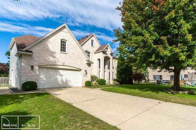 8351 Marquis Ct, Bedford Twp, MI 48144 (MLS #58050025387) :: The John Wentworth Group