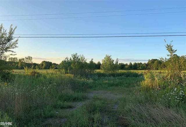 0 Marine City Highway Parcel A, China Twp, MI 48054 (#58050025697) :: The Merrie Johnson Team