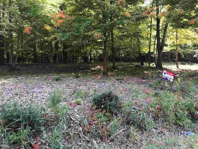 Vacant 25 MILE ROAD, New Baltimore, MI 48047 (MLS #58050025798) :: The John Wentworth Group
