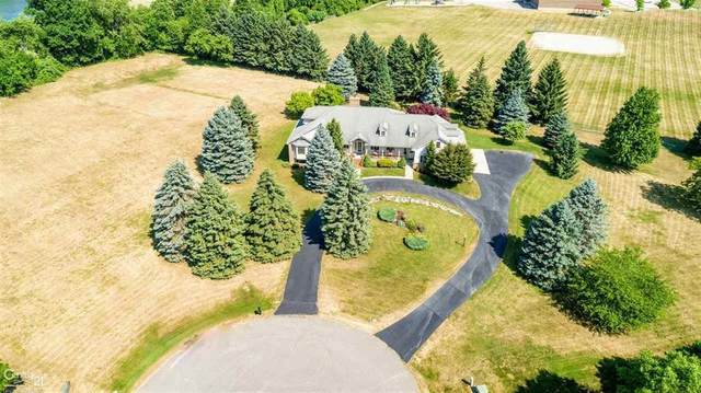 223 Addison Meadows Ct., Addison Twp, MI 48367 (MLS #58050026024) :: The John Wentworth Group