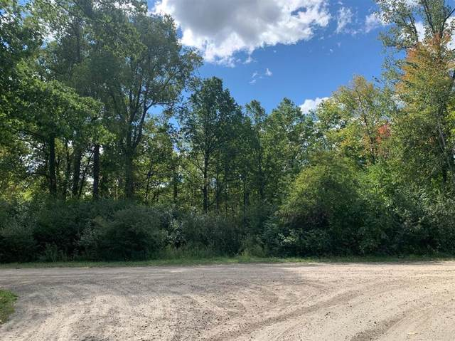 0 Darling Road, London Twp, MI 48160 (MLS #543276434) :: The John Wentworth Group