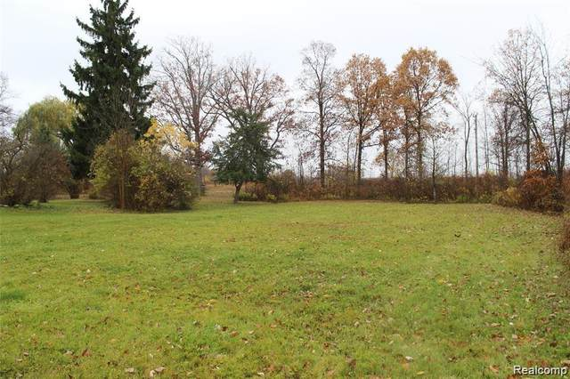 VL Bryce Vacant Road, Mussey Twp, MI 48014 (#2200089481) :: The Merrie Johnson Team