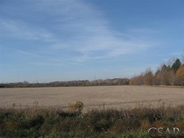 00 M-21 And Wren Rd., Caledonia Twp, MI 48817 (#60050028494) :: Robert E Smith Realty