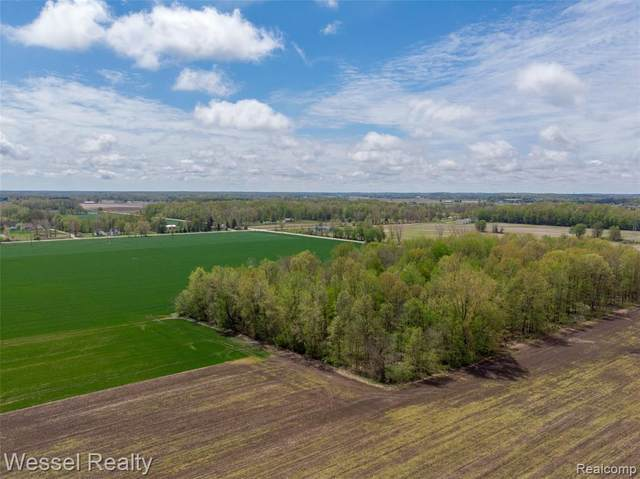 0 Wales Center Road, Wales Twp, MI 48027 (#2200093061) :: The Merrie Johnson Team
