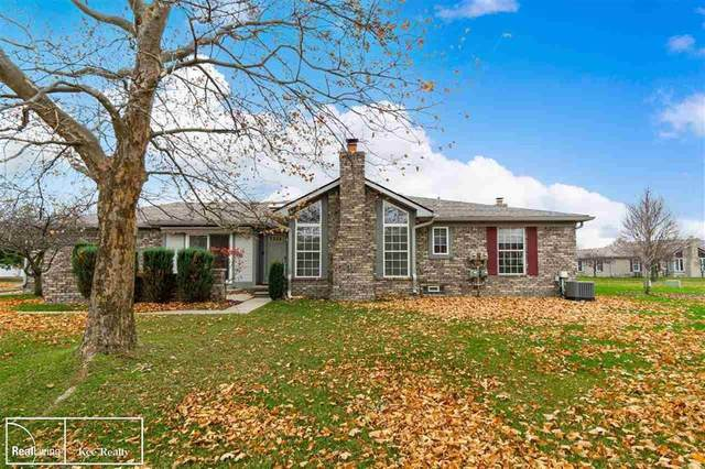 48550 Piedmont Ct, Shelby Twp, MI 48315 (#58050029021) :: Novak & Associates