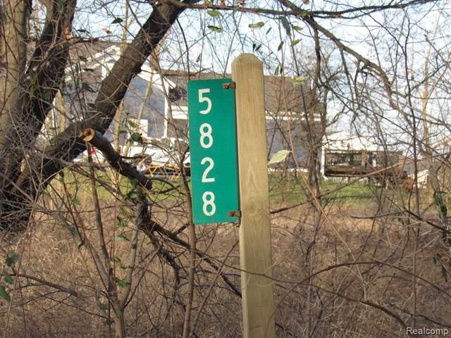 0000 Oak Hill Road, Brandon Twp, MI 48462 (MLS #2200096403) :: The John Wentworth Group