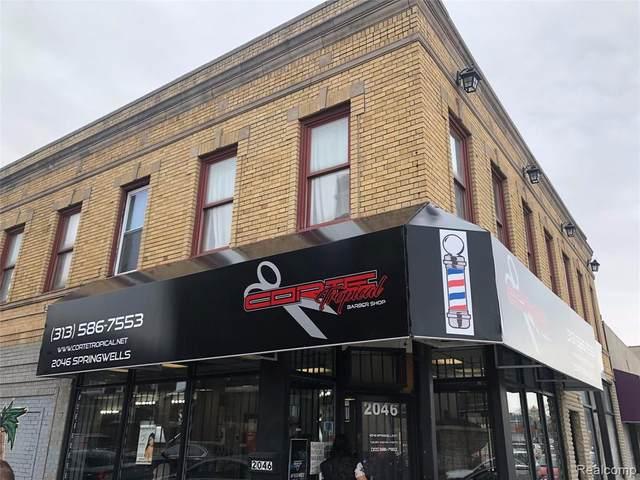 2046 Springwells, Detroit, MI 48209 (#2200096490) :: Duneske Real Estate Advisors