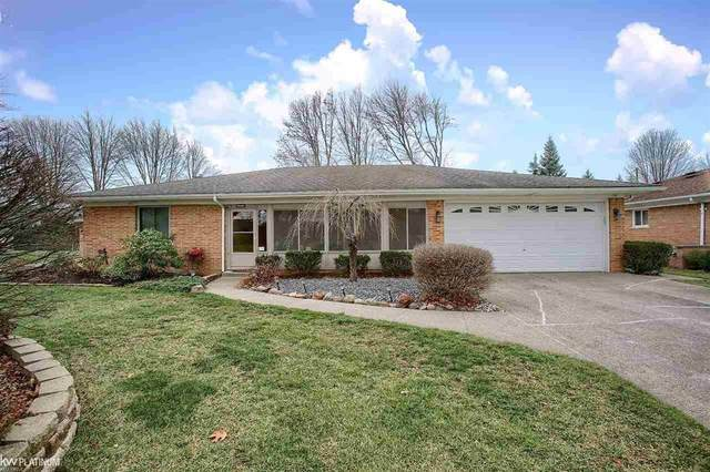 23230 Rochelle Dr, Macomb Twp, MI 48042 (#58050029792) :: The BK Agency