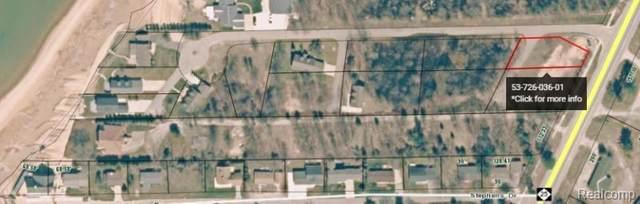 6835 Crystal Shores Drive, Caseville, MI 48725 (#2200096905) :: Novak & Associates