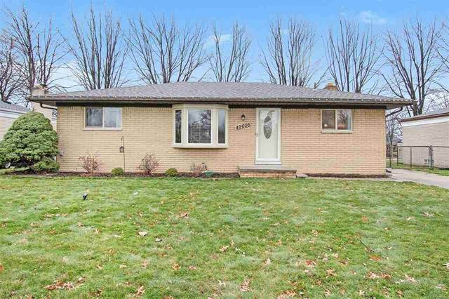 42606 Rutgers, Sterling Heights, MI 48313 (#58050029979) :: The Mulvihill Group