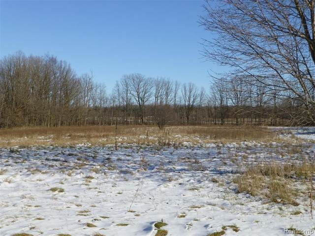 F-2 Bevic Drive, Lapeer Twp, MI 48446 (#2200097788) :: The Alex Nugent Team | Real Estate One