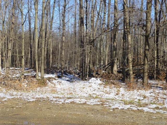 F-3 Bevic Drive, Lapeer Twp, MI 48446 (#2200097793) :: The Alex Nugent Team | Real Estate One