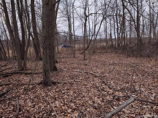 2.5 ac Bentley, Burnside Twp, MI 48416 (#2200100516) :: The Alex Nugent Team | Real Estate One
