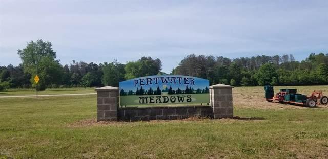 Lot N Meadow View Lane, WEARE TWP, MI 49420 (MLS #67020020095) :: The John Wentworth Group