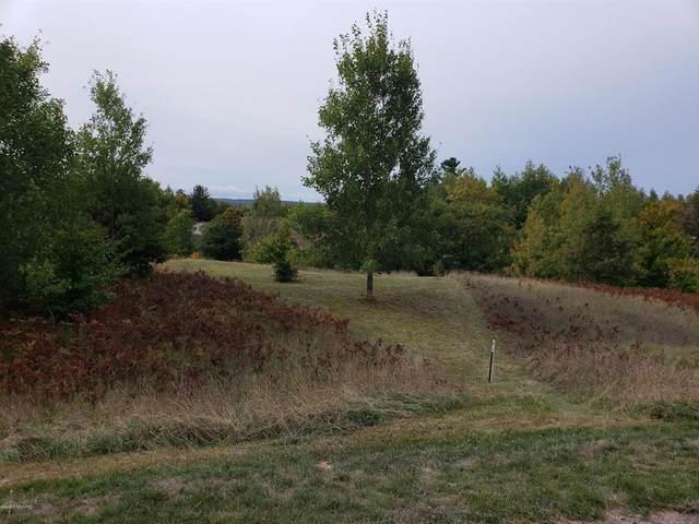 Eagle Ridge Circle, Onekama Twp, MI 49675 (#67020040415) :: The Alex Nugent Team | Real Estate One