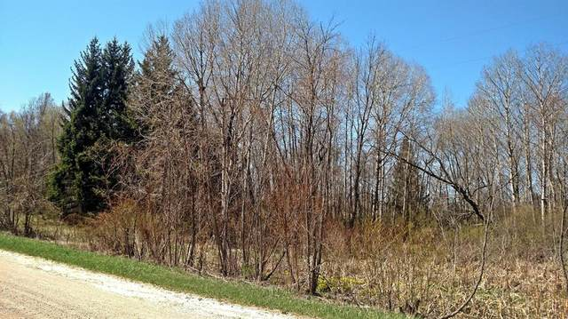 2.56 Acres S Tuttle Road, Custer Twp, MI 49405 (#67020046013) :: Real Estate For A CAUSE