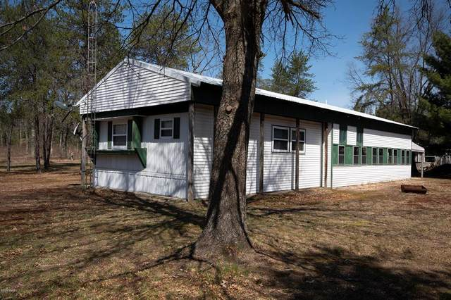 11066 N Merrillville Road, Eden Twp, MI 49644 (#67020007506) :: The Alex Nugent Team | Real Estate One