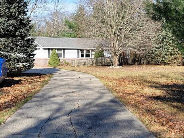 8324 W Bluegill Drive, Elk Twp, MI 49644 (#67020047676) :: GK Real Estate Team