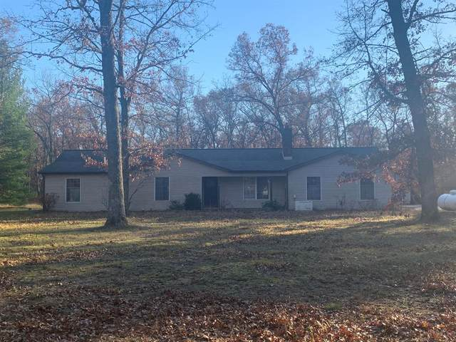 7719 Guenthardt Road, Stronach Twp, MI 49660 (#67020046517) :: The Mulvihill Group