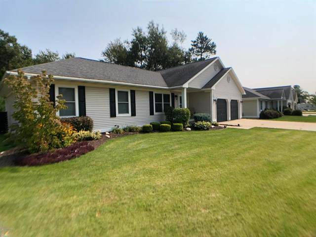 212 Jonathan Drive, Cadillac, MI 49601 (#72020039587) :: Robert E Smith Realty