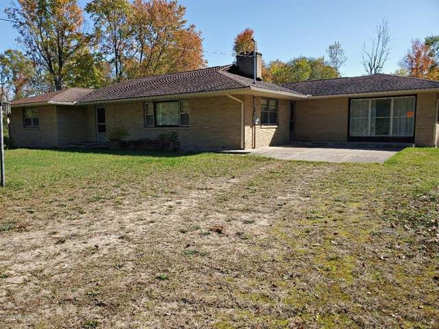6762 M37, Pleasant Plains Twp, MI 49304 (MLS #72020042302) :: The John Wentworth Group