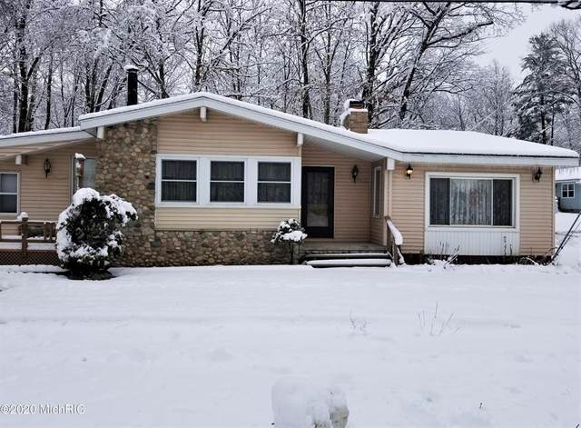 1134 N N Clare Ave Avenue, HAYES TWP, MI 48625 (#72020050581) :: The Alex Nugent Team   Real Estate One