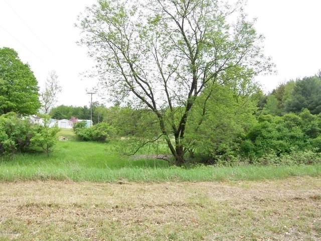 Lot 2 Ridge Road, Osceola Twp, MI 49631 (#72020032168) :: Real Estate For A CAUSE