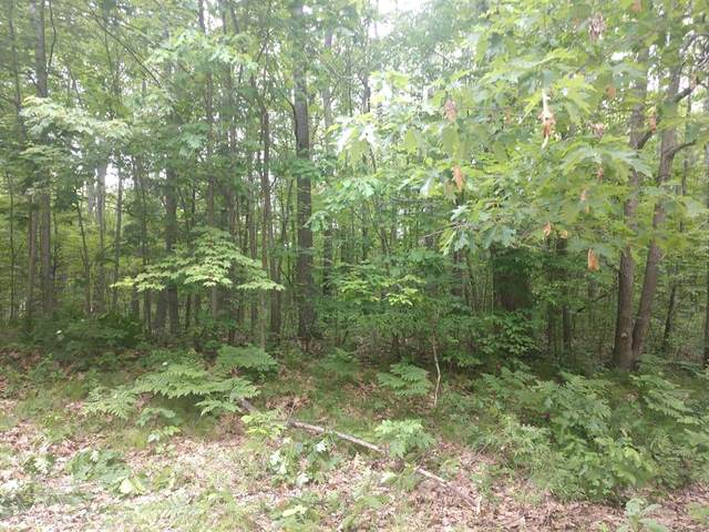 Lot #5 Mulberry Lane, Big Rapids Twp, MI 49307 (#72020025973) :: Real Estate For A CAUSE