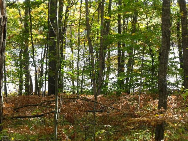 (Lot 275) Alpine Drive, Cedar Twp, MI 49677 (#72020046630) :: RE/MAX Nexus