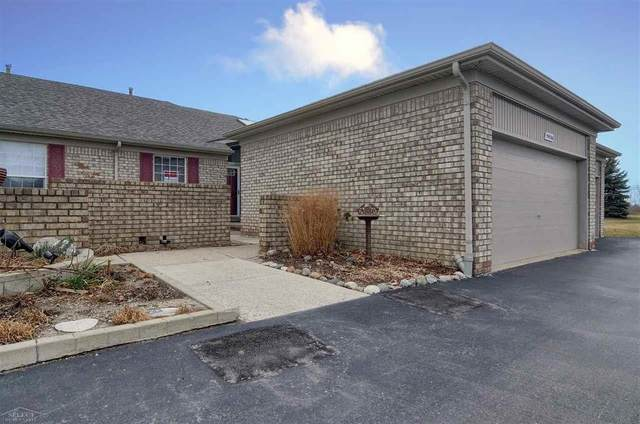 59026 Golden Oak, Washington Twp, MI 48094 (#58050031153) :: Robert E Smith Realty