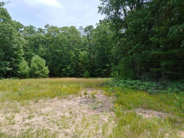 Lot 2 Angelwood Drive, Fruitland Twp, MI 49445 (#71019034598) :: The Mulvihill Group