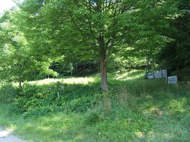 7040 Sadony Road, White River Twp, MI 49437 (#71019039150) :: Keller Williams West Bloomfield