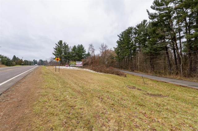 Michigan Avenue W, Bedford Twp, MI 49037 (#66019058740) :: GK Real Estate Team