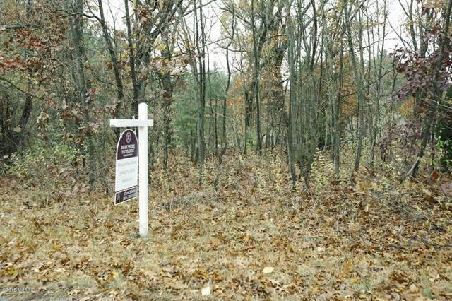 Arrowhead Trail, Valley Twp, MI 49010 (#66020028383) :: The Merrie Johnson Team