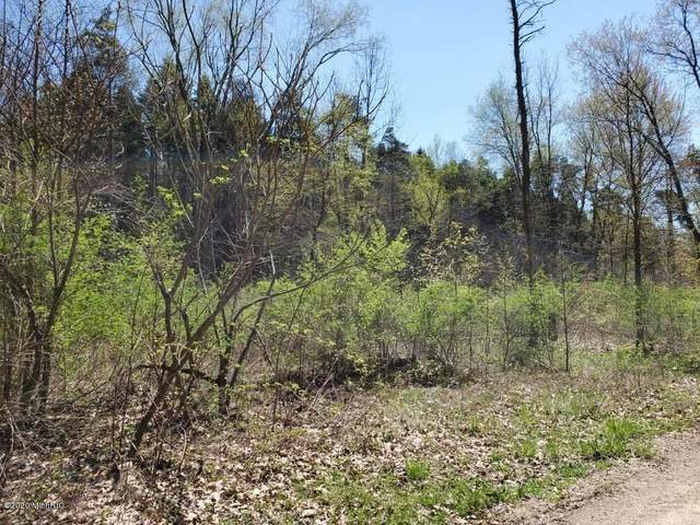 Parcel F Coyote Trail, Jefferson Twp, MI 49112 (MLS #69020013597) :: The John Wentworth Group