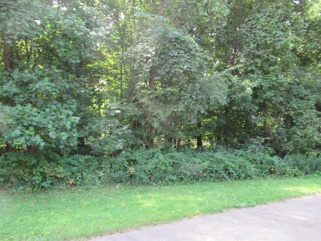 Tract 1 Deep Woods Drive, Lagrange Twp, MI 49031 (#69019042445) :: The Mulvihill Group