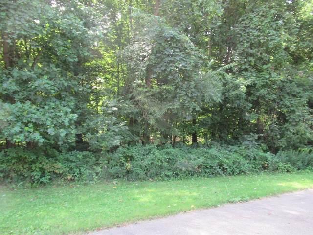 Tract 1 Deep Woods Drive, Lagrange Twp, MI 49031 (#69019042445) :: Keller Williams West Bloomfield