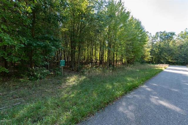 Misty Pines Development, Silver Creek Twp, MI 49047 (#69020005181) :: GK Real Estate Team
