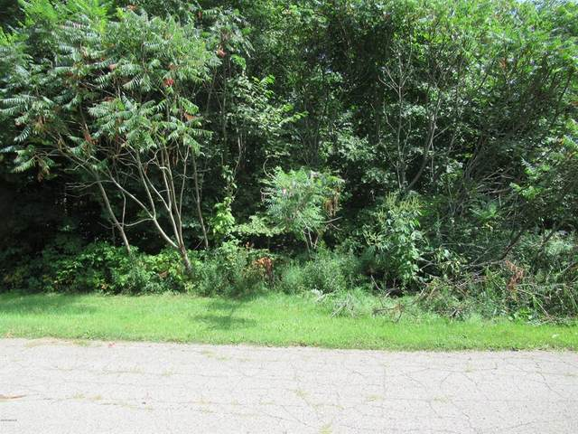 Tract 3 Deep Woods Drive, Lagrange Twp, MI 49031 (#69019042836) :: Keller Williams West Bloomfield