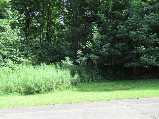 Tract 4 Deep Woods Drive, Lagrange Twp, MI 49031 (#69019042837) :: Keller Williams West Bloomfield