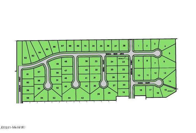 415 Seneca Ridge, Middleville Vlg, MI 49333 (#65015053790) :: Real Estate For A CAUSE