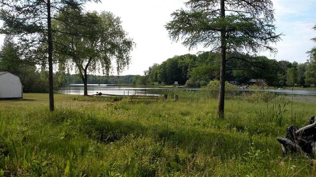 Parcel A Birch Circle, Douglass Twp, MI 48850 (#65019000834) :: NextHome Showcase