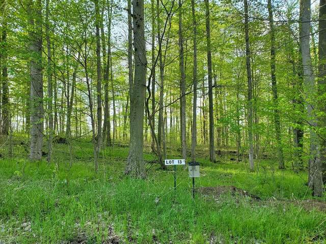 Lot 13 Hjermstad Drive, Berlin Twp, MI 48846 (#65020017021) :: The Alex Nugent Team | Real Estate One