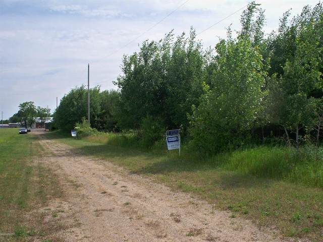 PARCEL 4 Musgrove Highway, Sebewa Twp, MI 48890 (#65020021292) :: The Alex Nugent Team | Real Estate One