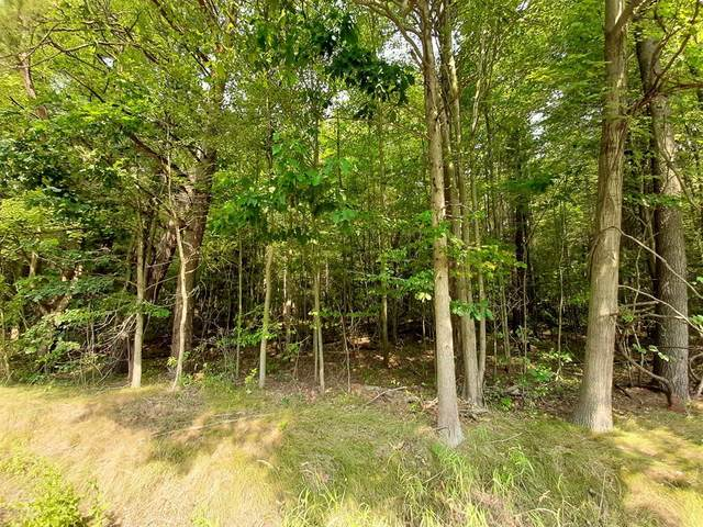 V/L Parcel A Bossett Rd, Moorland Twp, MI 49451 (#65020038268) :: The Merrie Johnson Team